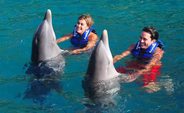 Couples Dreams - Dolphin Swim Cancun Aquarium