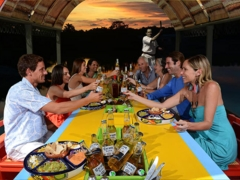 Mexican Dinner Cruise in Xoximilco - Public